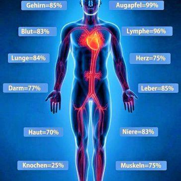 Das passiert, wenn du direkt nach dem Aufstehen 3 Gläser reines Wasser trinkst: Wasser als Medizin!